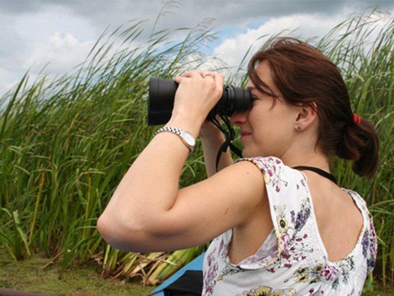 Observación Aves Ronda